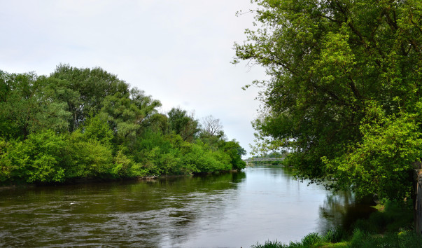 1576213 603x354 - Река Западный Буг