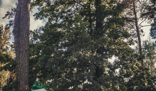 """159570 603x354 2 - Оздоровительный комплекс """"Ракета"""" в Ждановичах"""