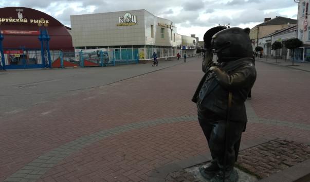 1718941 603x354 2 - Памятник бобру в Бобруйске