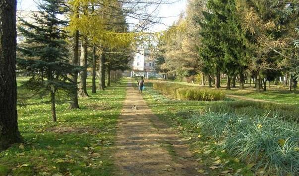 185957 603x354 1 - Ботанический сад Витебского государственного университета