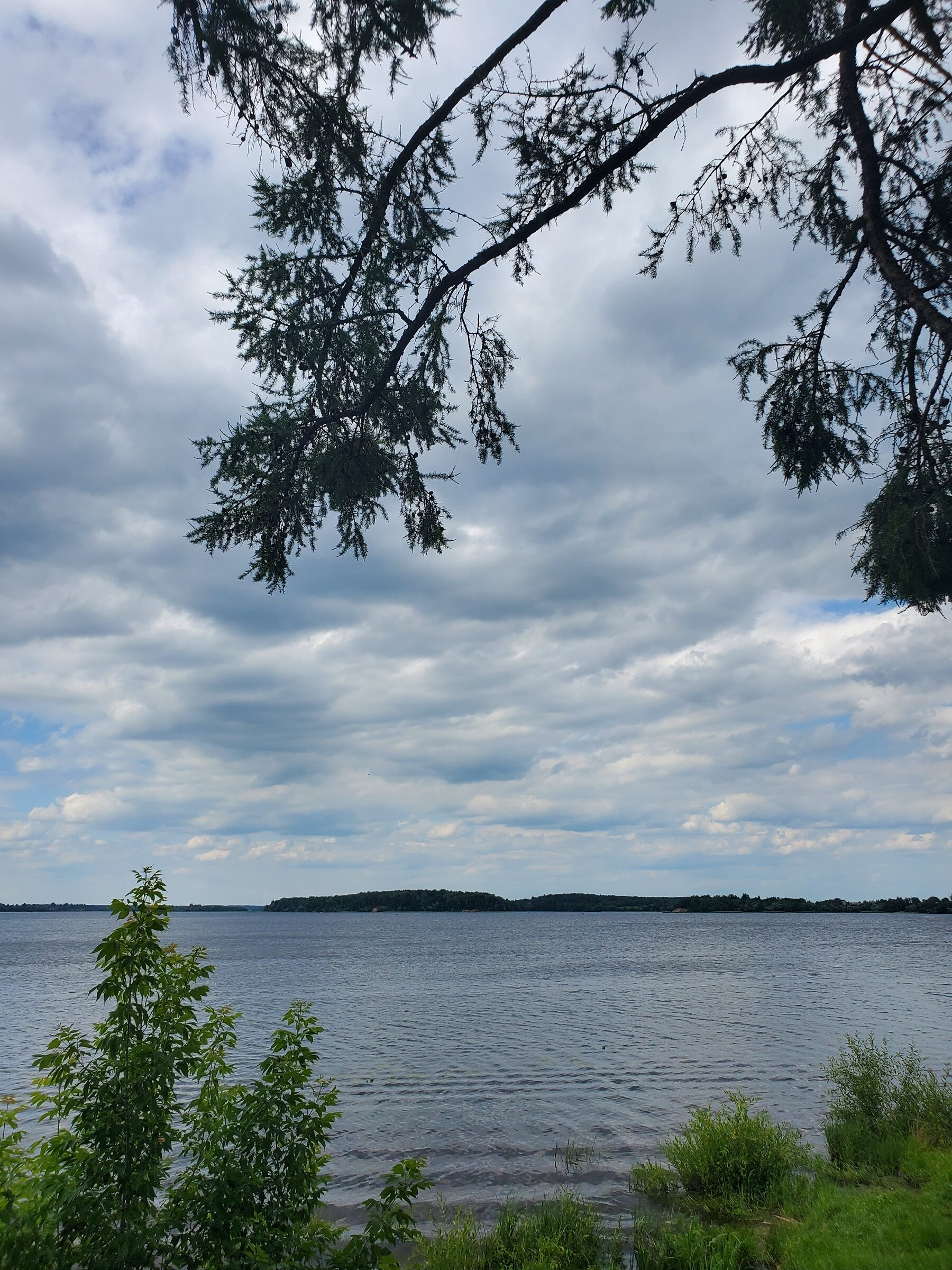 20200705 154538 rotated - Лепельское озеро
