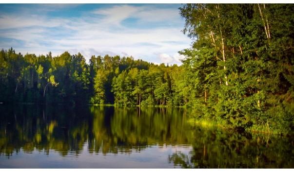 71527 603x354 3 - Озеро Липки