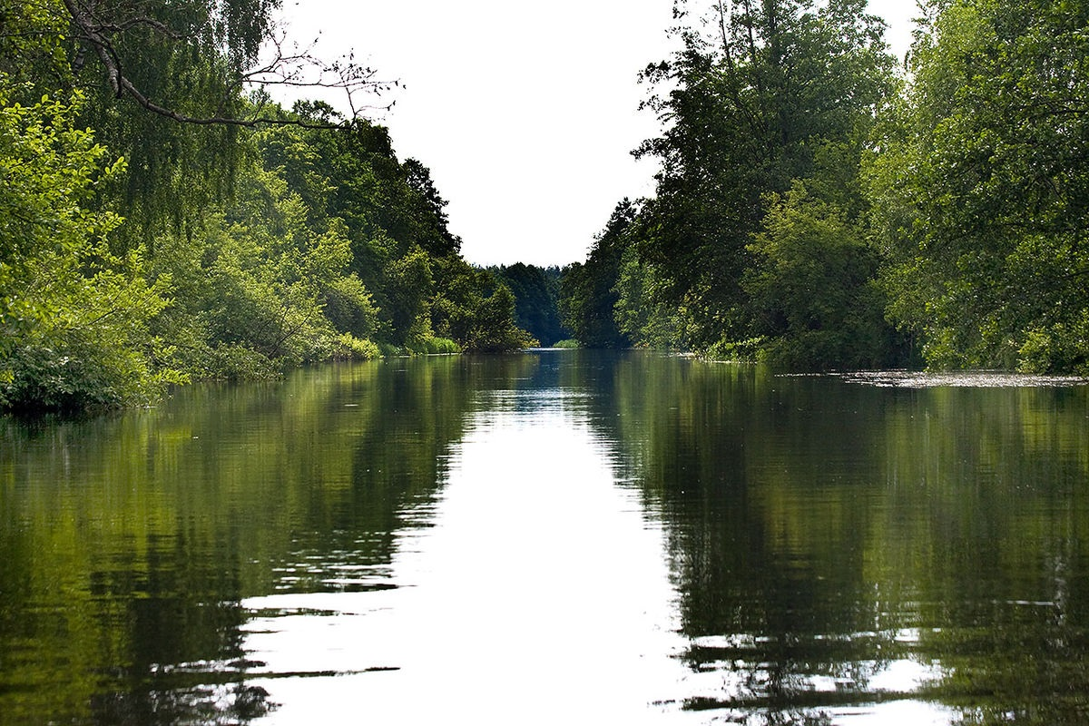 """Bobr River - Водный маршрут """"Река Бобр - Березина"""""""