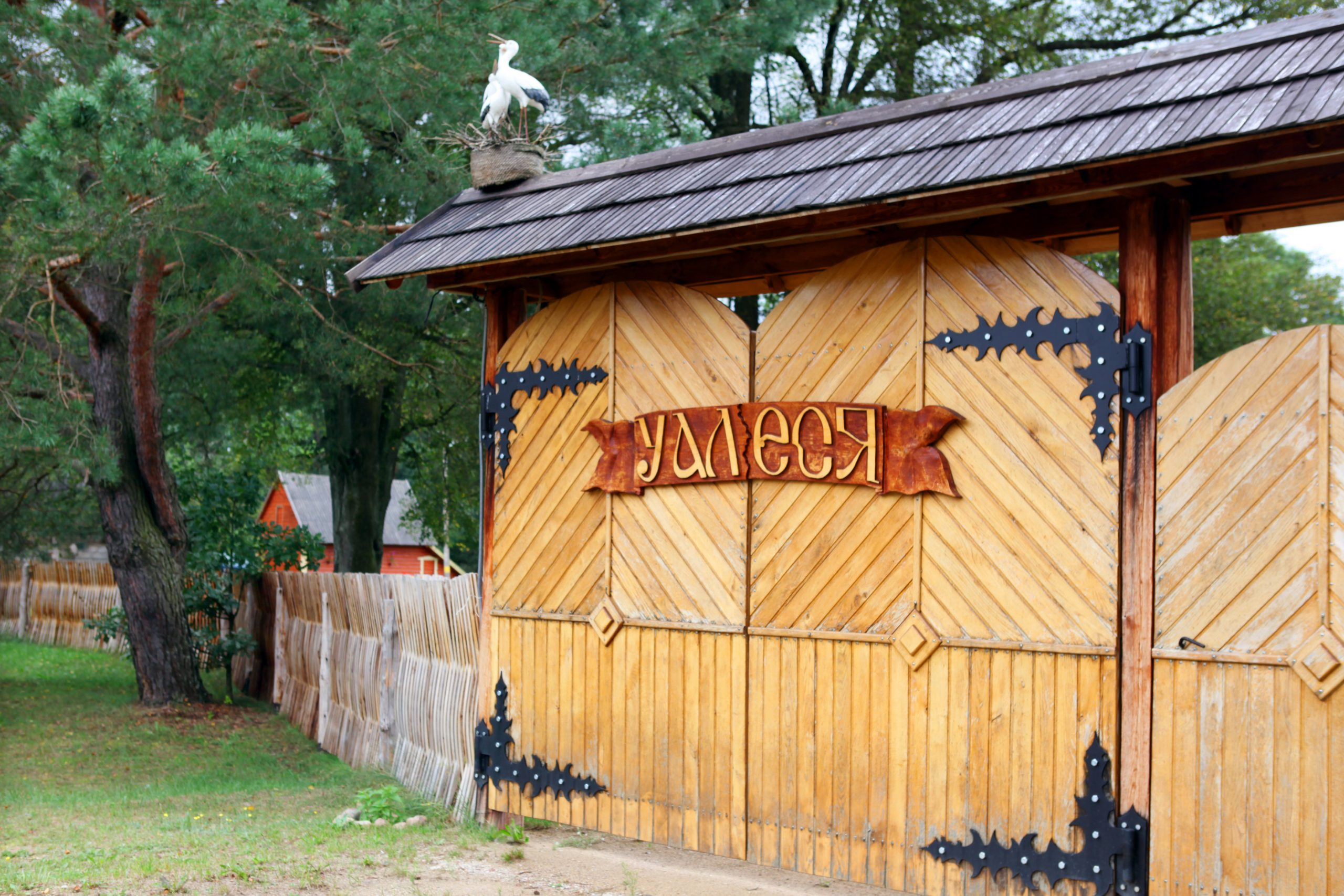 "IMG 1910 2 scaled - Агроусадьба ""У Алеся"""