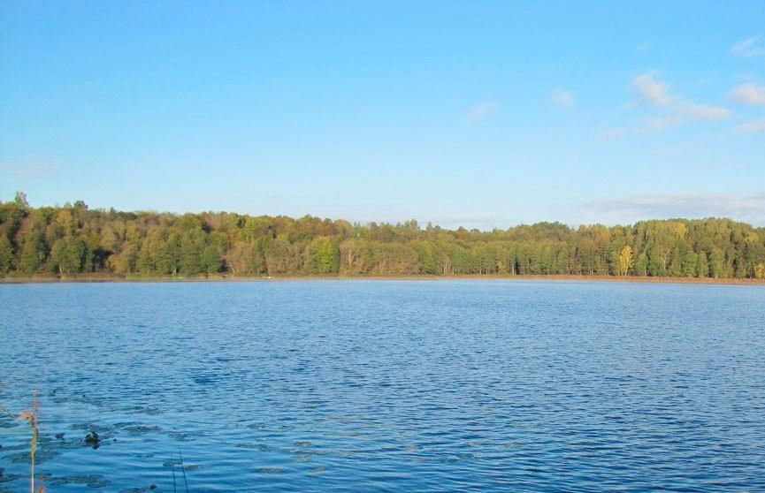 Ozero Beloe 1 - Озеро Белое