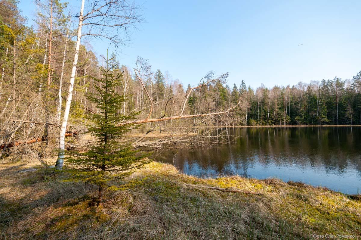 Озеро Свинок